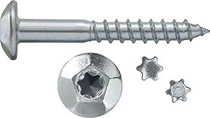 TINV: TORNILLO INVIOLABLE, HUELLA TORX-40. TAMPERPROOF SCREW WITH TORX-40 RECESS. VIS INVIOLABLE, TORX-40