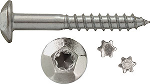 TINV: TORNILLO INVIOLABLE, HUELLA TX-40. TAMPERPROOF SCREW WITH TORX-40 RECESS. VIS INVIOLABLE, TORX-40